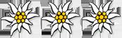 edelweiss mehlerhof tux